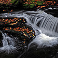 Flowing Through Fall Color by Dave Mills
