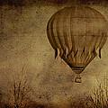 Flying High by Trish Tritz