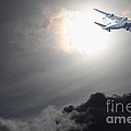 Flying The Friendly Skies by Wingsdomain Art and Photography