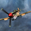 Flying Tiger P-40 Warhawk by Walter Colvin