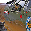 Flying Tigers 02 by Jeff Stallard