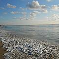 Foamy Seas by Sheila Silverstein