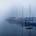 Fog Hides Sun From Sailboats by Randall Branham
