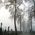 Foggy Cemetery by Mary Lane