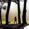 Foggy Day To Walk The Dog by Harry Neelam