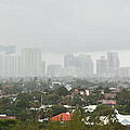 Foggy Fort Lauderdale Florida by Michelle Constantine