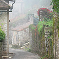 Foggy Lane In St Cirq by Greg Matchick