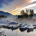 Foggy Port In Sunrise by Mats Silvan