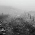 Foggy Welsh Slate Hills by Philip Haynes