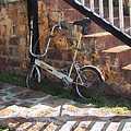 Folding Bicycle Antigua by Susan Savad