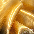 Folding Gold by Artist and Photographer Laura Wrede
