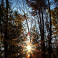 Follow The Sun by Gary Smith