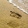 Footprint by Keith Allen