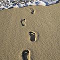 Footprints In The Sand by David Chapman