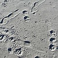 Footprints In The Sand by HW Kateley