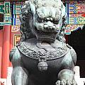 Forbidden City Lion Guardian by Carol Groenen