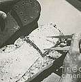 Forensics by Photo Researchers