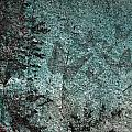 Forest Abstract by Eena Bo