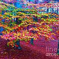 Forest Color Leaves by Go Van Kampen
