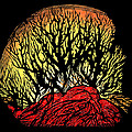 Forest Fire, Lino Print by Gary Hincks
