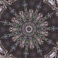 Forest Mandala 3 by Rhonda Barrett