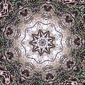 Forest Mandala 4 by Rhonda Barrett