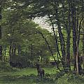 Forest Of Fontainebleau by Nathaniel Hone
