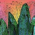 Forests Edge by Tim Allen