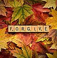 Forgive-autumn by  Onyonet  Photo Studios