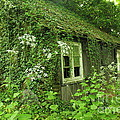 The Forgotten English Cottage by Rene Triay Photography