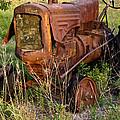 Forgotten Tractor 20 by Douglas Barnett