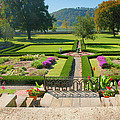 Formal Garden I by Steven Ainsworth