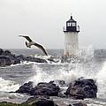 Fort Pickering Lighthouse Salem Ma by Len Burgess