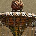 Fountain Art I by Debbie Portwood