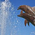 Fountain  by Betsy Knapp