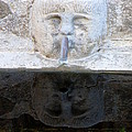 Fountain Face by Lainie Wrightson