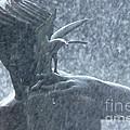 Fountain Of Faith Birdman by Susan Isakson