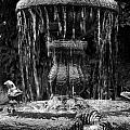 Fountain by RicardMN Photography