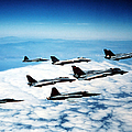Four F-14 Tomcats And Three F-5 Tiger by Dave Baranek