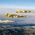 Four F-5 Tiger IIs Fly Above Southern by Dave Baranek