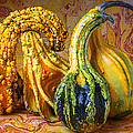 Four Gourds by Garry Gay