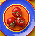 Four Tomatoes  by Garry Gay