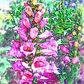 Foxglove Floral by Kathy Clark