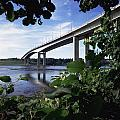 Foyle Bridge, Derry City, Co by The Irish Image Collection