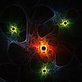 Fractal Network by Steve K