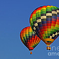 Fraternal Twin Balloons by Benanne Stiens