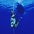 Free-diving Training by Alexis Rosenfeld