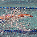 Freestyle by Susan Leggett