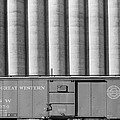 Freight Car And Grain Elevators by Everett
