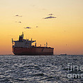 Freight Tanker At Sea - Sunset In Port Aransas by Andre Babiak